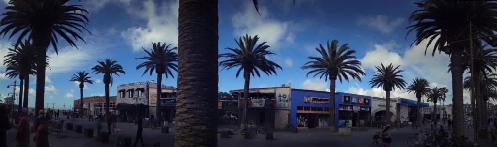 Maria Matarelli LA Palm Trees